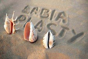 Labiaplasty Blog Image